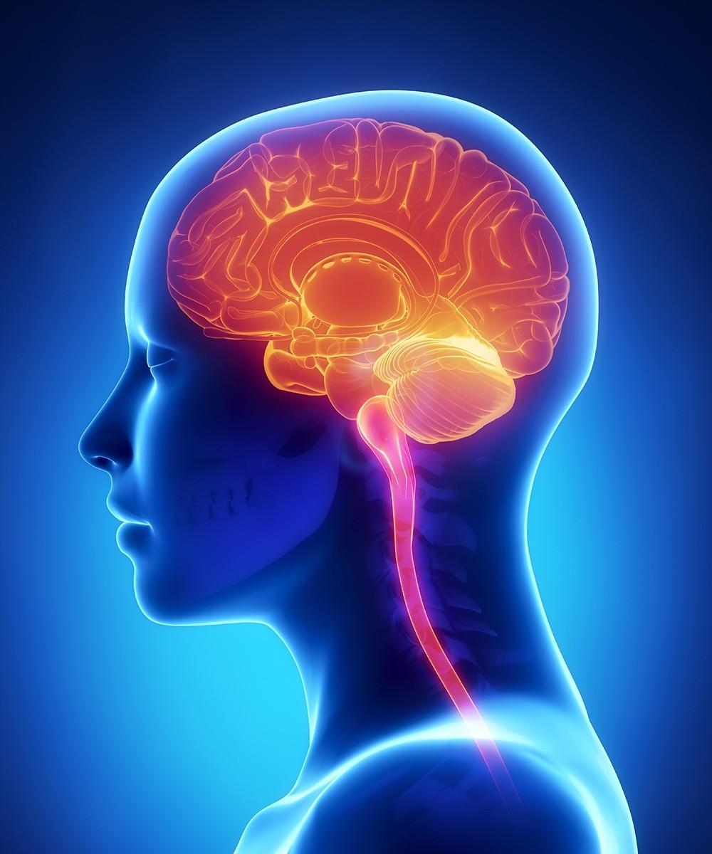 Cerebrovascular Surgery
